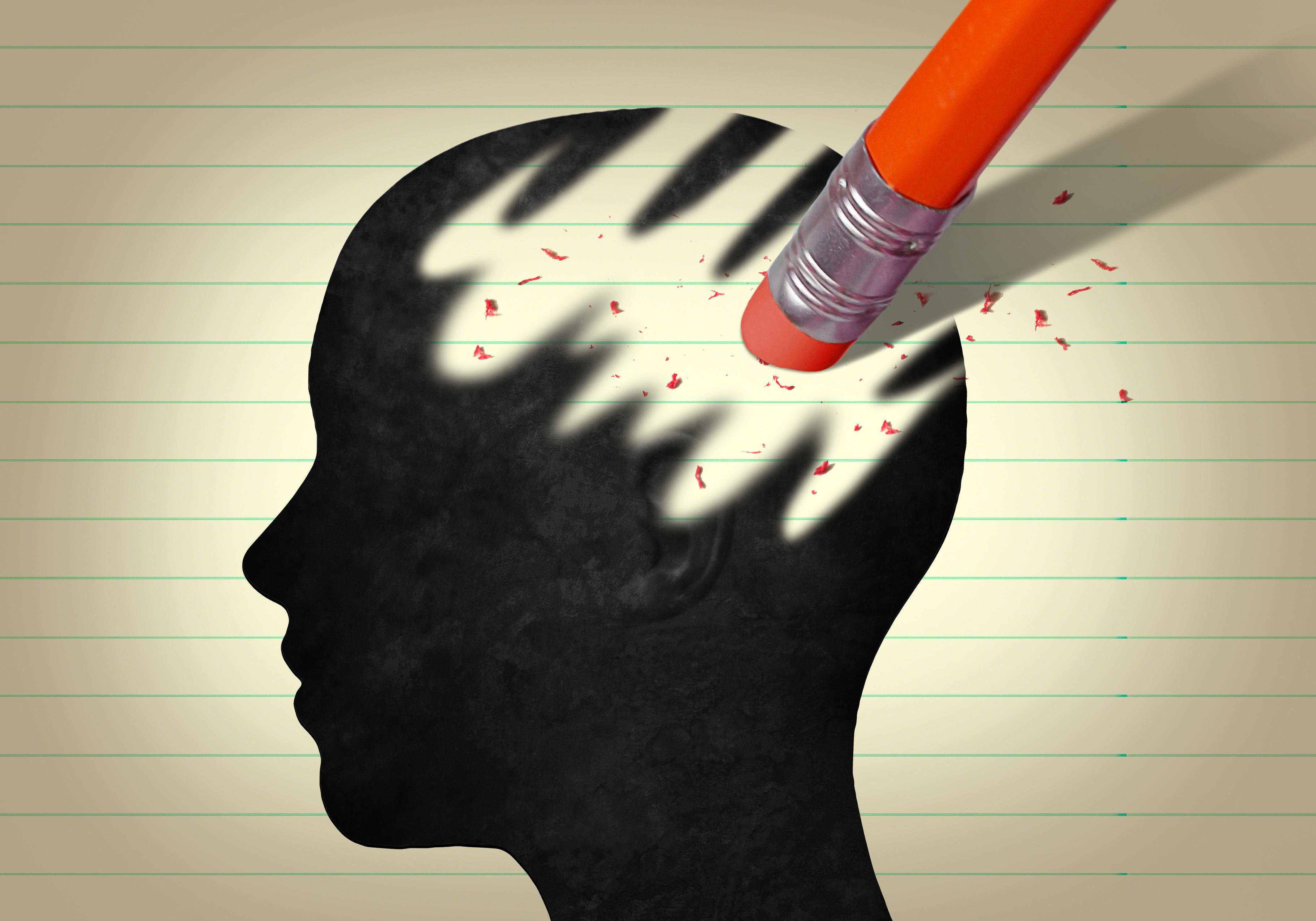 cerveau mémoire brain